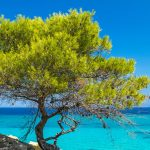 Χαλκιδική Διακοπές Καλοκαίρι - Ξενοδοχεία