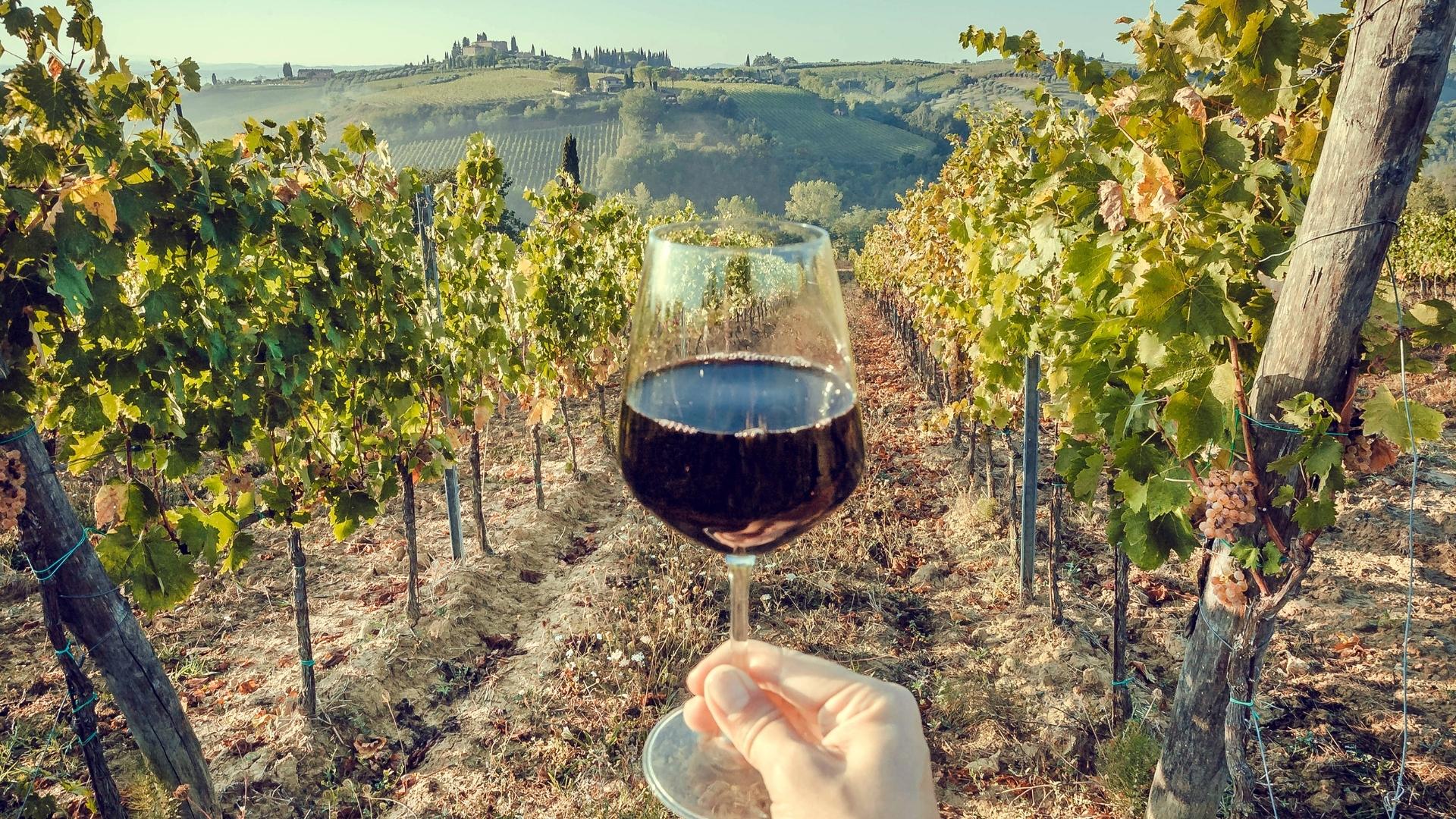 tuscany-winery