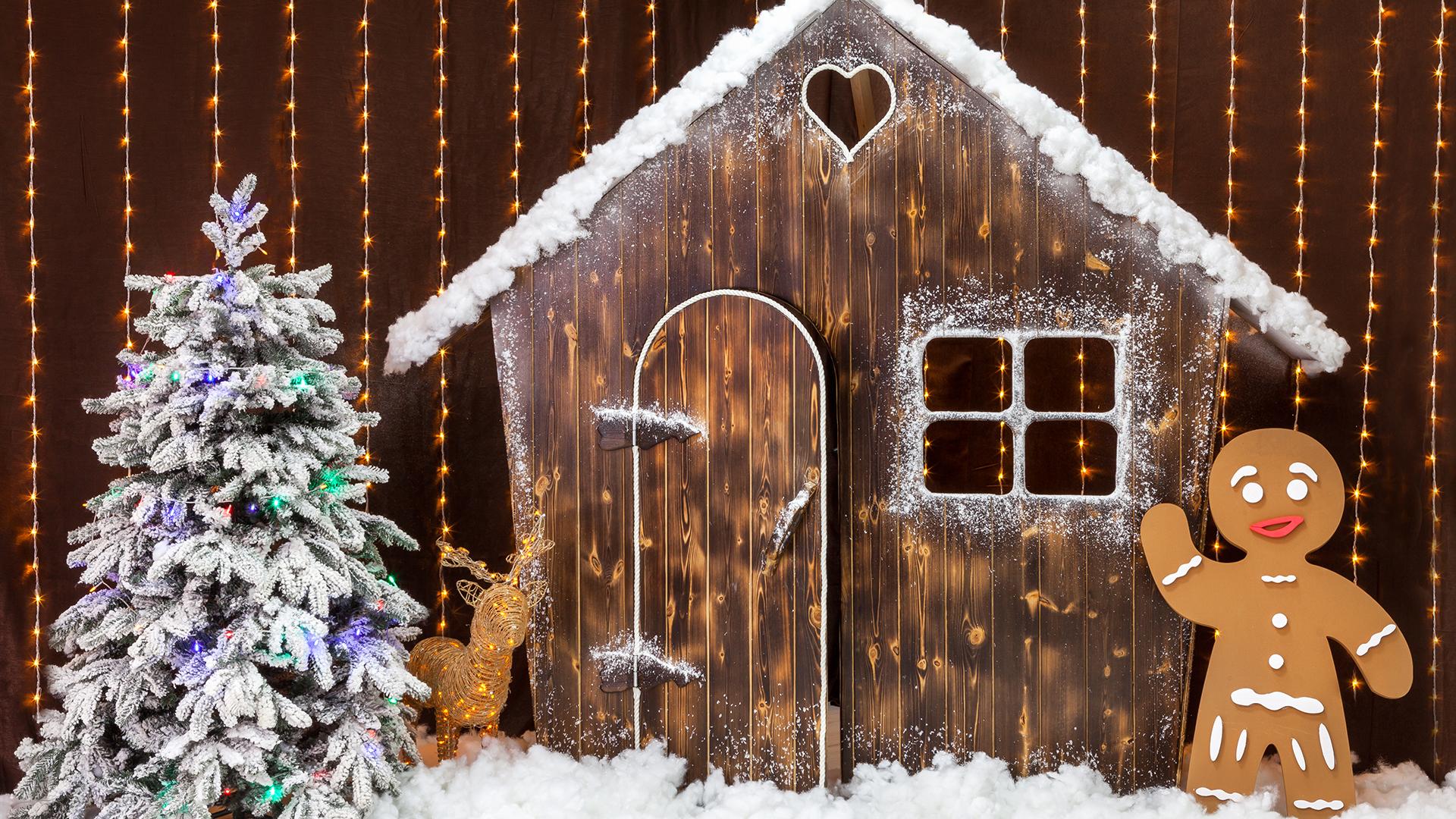 Ταξίδι στη Λαπωνία | Δείτε το χωριό του Αγιου Βασιλη τα Χριστούγεννα και την Πρωτοχρονιά | Δείτε από κοντά ταρανδους, χάσκι, κάντε βόλτα με snowmobiles και ζήστε τα Χριστούγεννα πιο αυθεντικά από ποτέ!